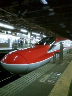 Akita_usiro