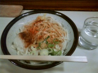 Hoshino_kishibori