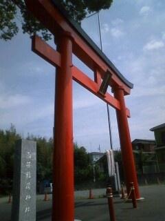 Shirasasa_tori